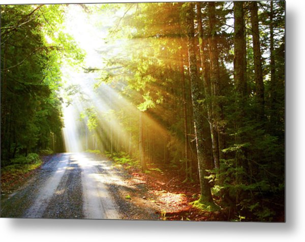 Sunflare On Road Metal Print