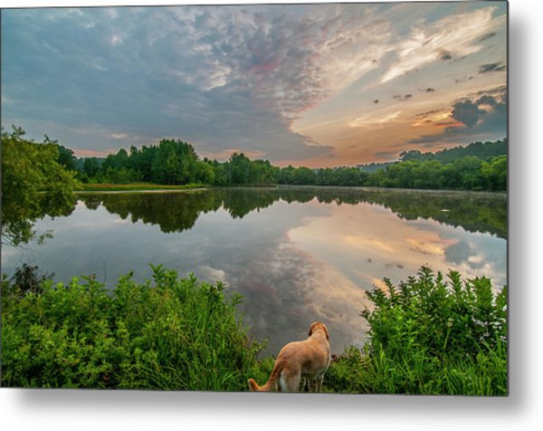 Sunrise At Ross Pond Metal Print