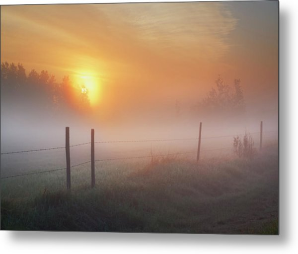Sunrise Over Morning Pasture Metal Print