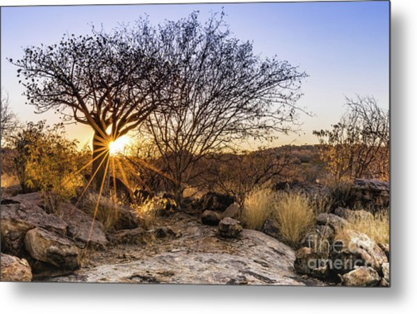 Sunset In The Erongo Bush Metal Print