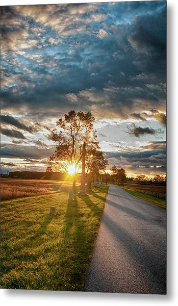 Sunset In The Tree Metal Print