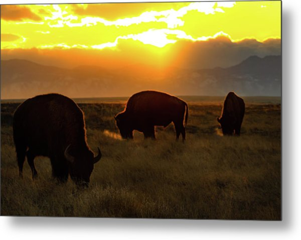 Sunset On The Plains Of Colorado Metal Print