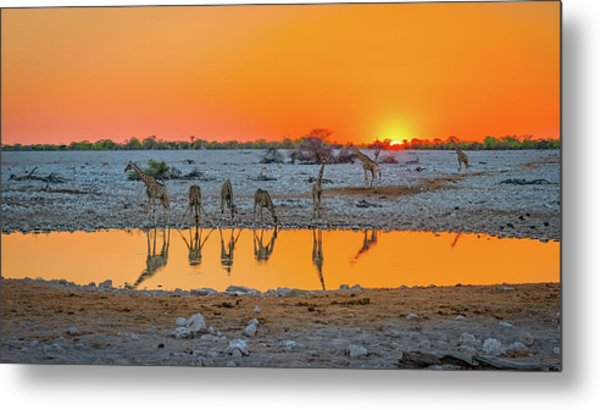 Sunset Over Okaukuejo Metal Print