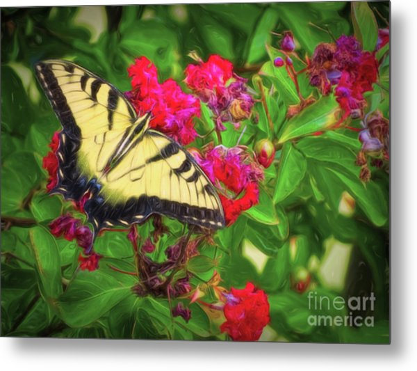 Swallowtail Among Flowers Metal Print