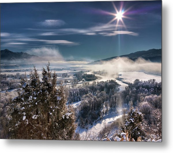 Swan Valley Winter Metal Print