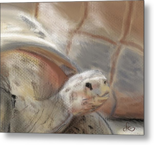 Metal Print featuring the digital art Sweet Tortoise by Fe Jones
