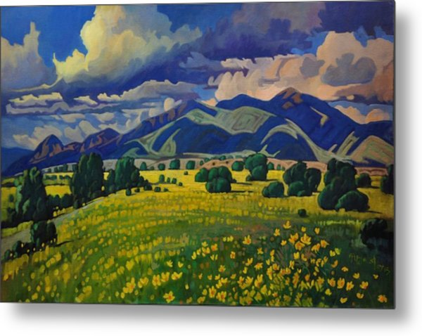 Taos Yellow Flowers Metal Print