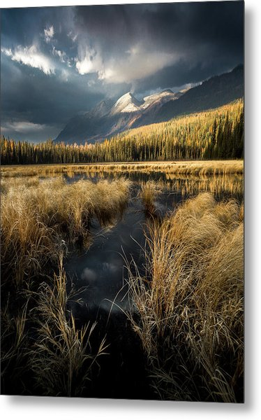 Metal Print featuring the photograph Tapering Rains / Whitefish, Montana  by Nicholas Parker