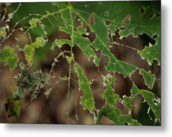 Tasty Tree Metal Print