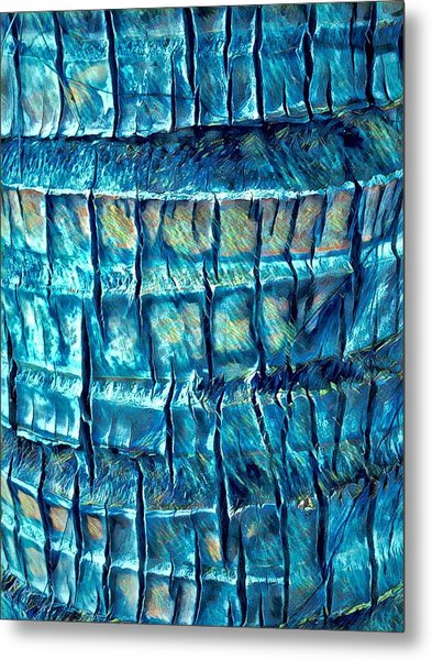 Teal Palm Bark Metal Print