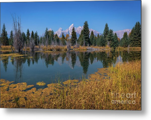 Tetons Majesty Metal Print
