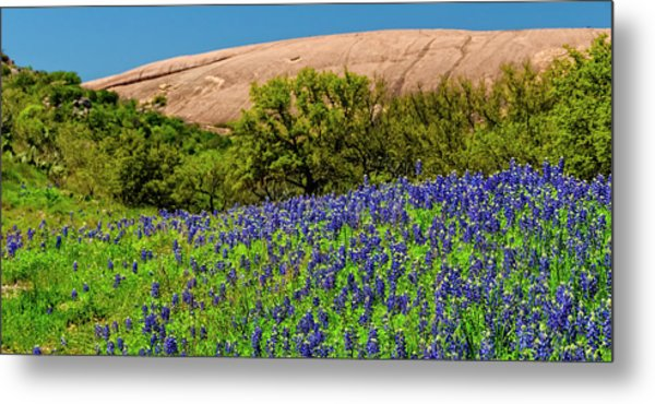 Texas Bluebonnets And Enchanted Rock 2016 Metal Print
