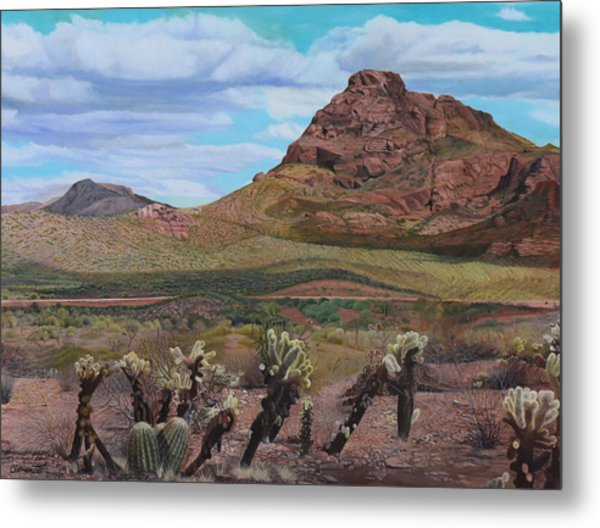 The Cholla At Mount Mcdowell, Arizona Metal Print