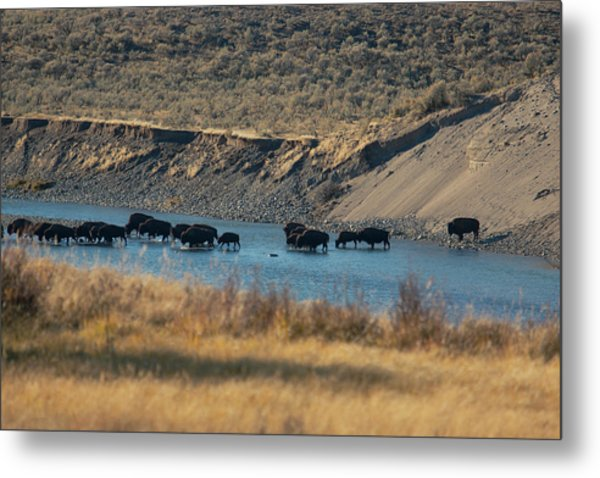 Metal Print featuring the photograph The Crossing by Pete Federico