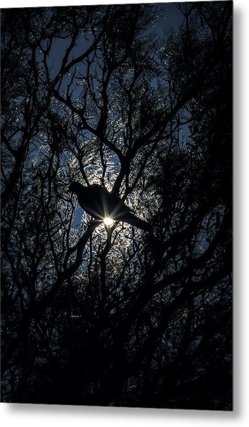 The Enlightened Dove Metal Print