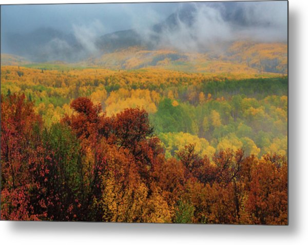 The Feeling Of Fall Metal Print