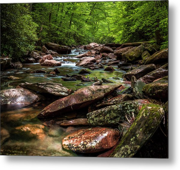 The Forest Primeval Metal Print