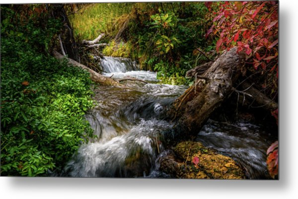 Metal Print featuring the photograph The Giving Stream by TL Mair