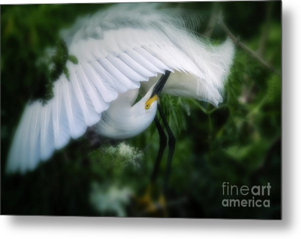 The Nature Of Beauty Metal Print