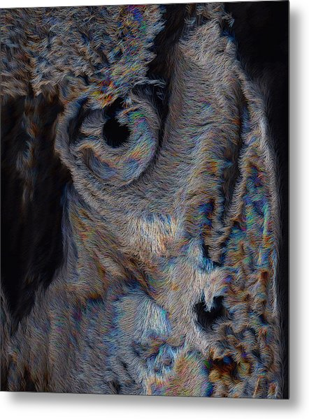The Old Owl That Watches Metal Print