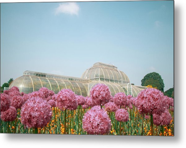 The Palm House Metal Print