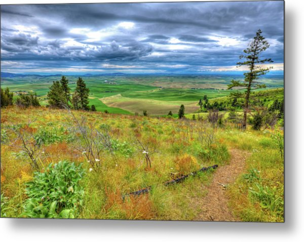 Metal Print featuring the photograph The Path Down Kamiak Butte by David Patterson
