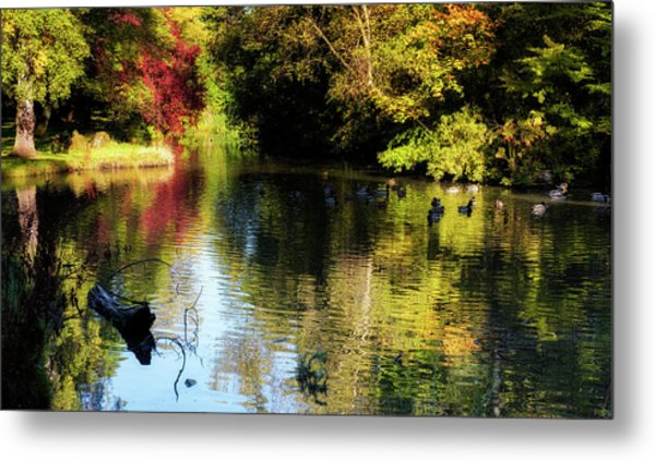 Metal Print featuring the photograph The Pond At Inglewood House by Jeremy Lavender Photography