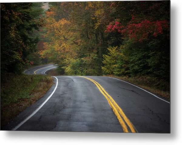 The Road To Friends Lake Metal Print