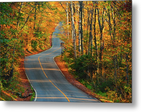 Metal Print featuring the photograph The Road Up Mount Greylock by Raymond Salani III
