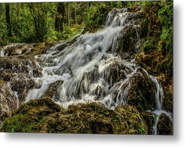 The Springs In It's Summer Green, Big Hill Springs Provincial Re Metal Print
