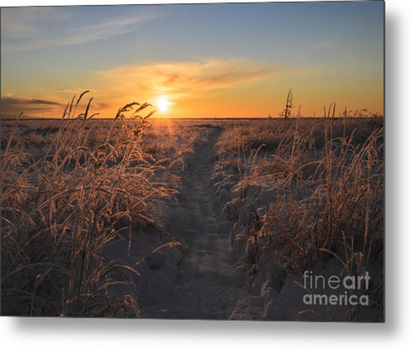 The Sun Sets In The Anchorage Coastal Metal Print