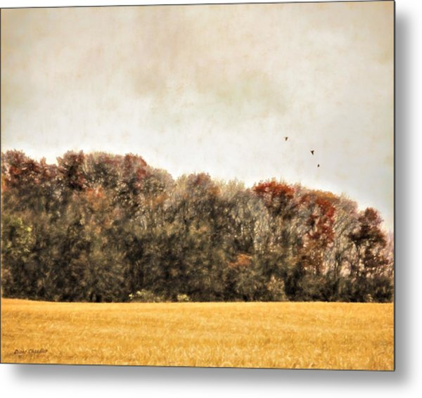 Three Crows And Golden Field Metal Print