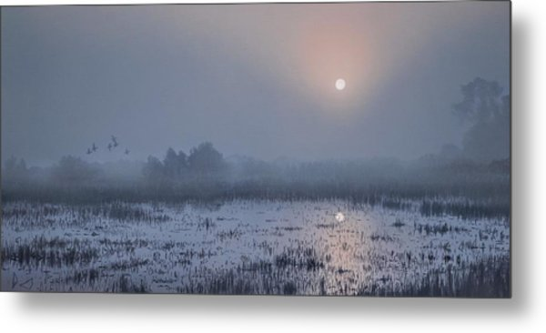 Through The Fog Metal Print