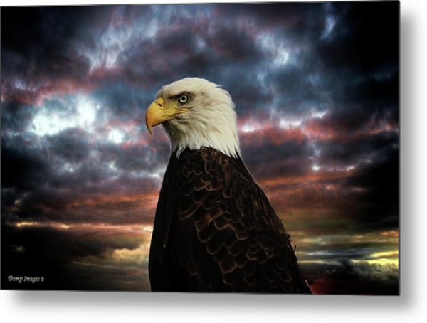 Thunder Eagle Metal Print