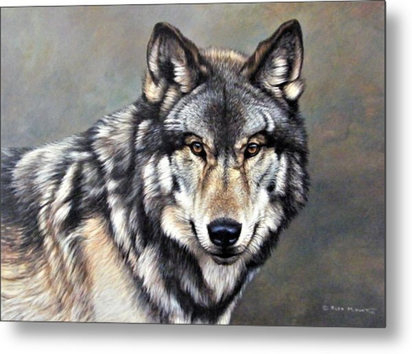 Timber Wolf By Alan M Hunt Metal Print