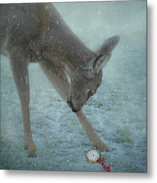 Metal Print featuring the photograph Time For Christmas by Sally Banfill