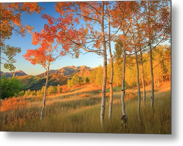 Timp With Fiery Aspens Metal Print