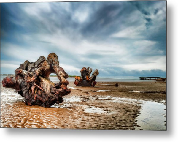 Tossed Up On The Beach Metal Print