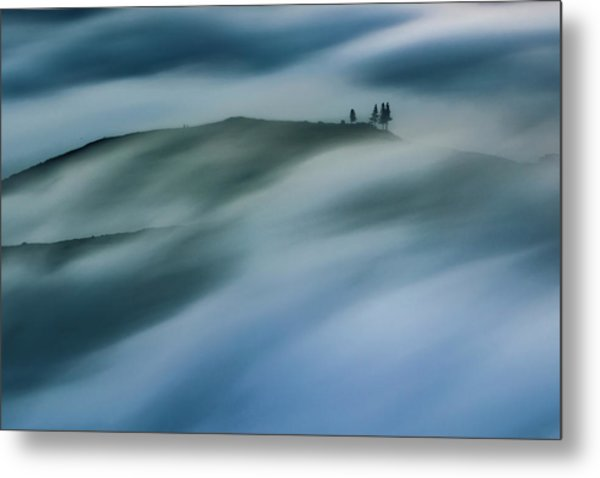 Touch Of Wind Metal Print