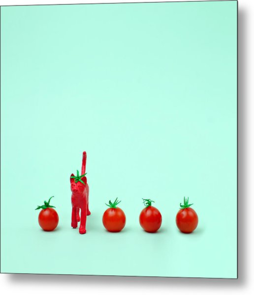 Toy Cat Painted Like A Tomato In Row Metal Print