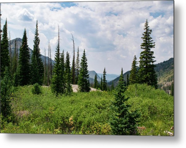 Trail To Gilpin Lake Metal Print