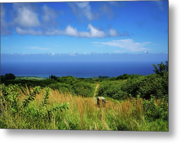 Trail To The Ocean Metal Print
