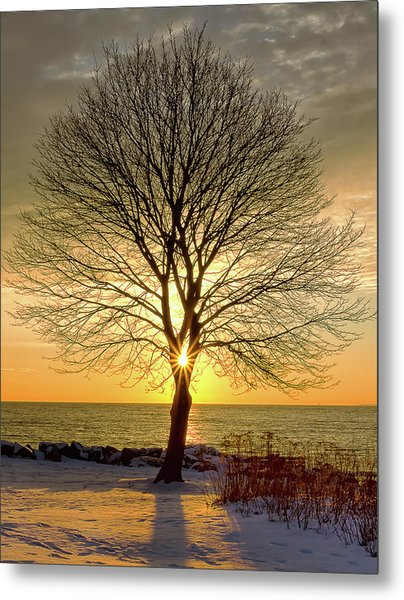 Tree Framed Sunrise New Hampshire Metal Print