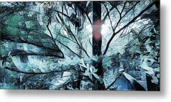 Tree Of Glass Metal Print