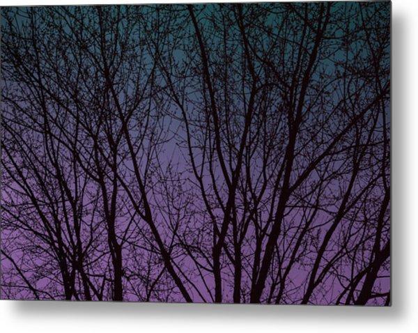 Tree Silhouette Against Blue And Purple Metal Print