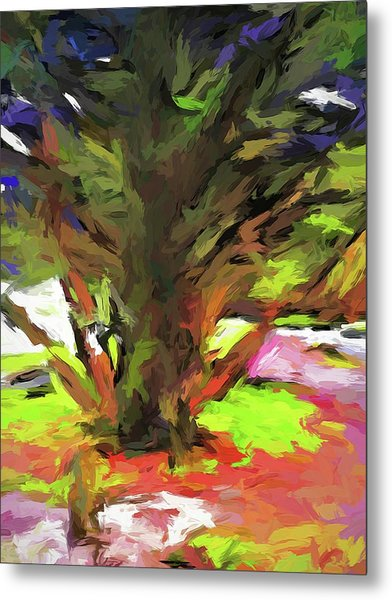 Tree With The Open Arms Metal Print