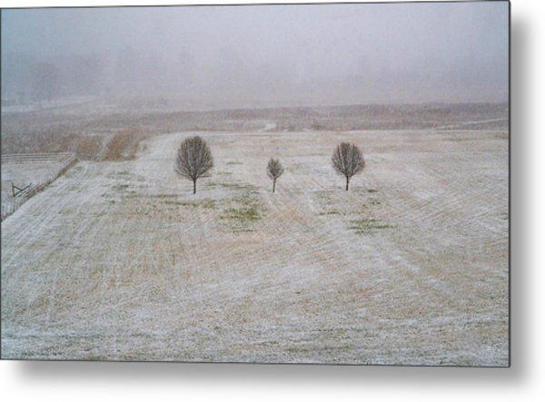 Trees In Snowstorm Metal Print