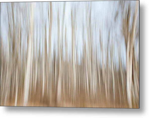 Trees On The Move Metal Print