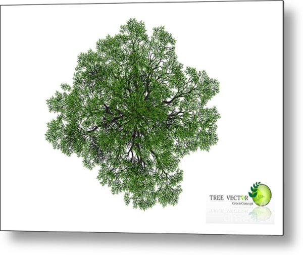 Trees Top View For Landscape Vector Metal Print