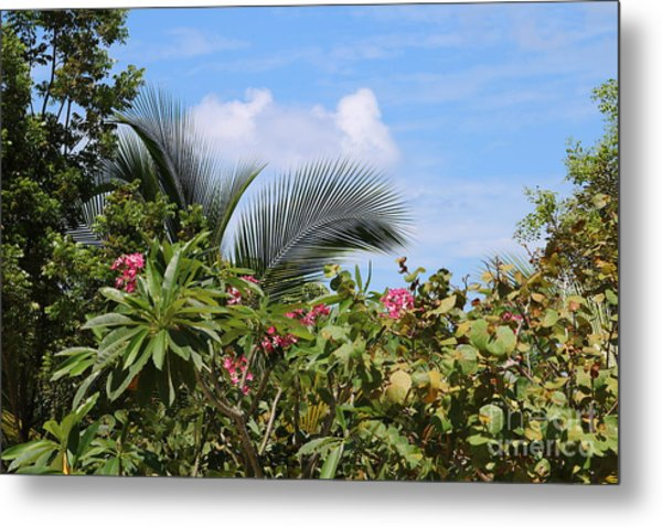 Tropical Flair Metal Print